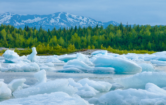 Mendenhall Lake Ice-burgs